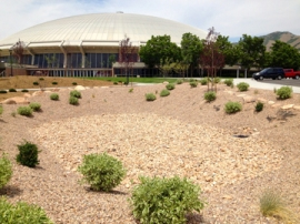 The University of Utah installed several stormwater retention ponds outside the Hunstman Center in May 2013. The ponds slow runoff from the newly installed parking area and helps remove pollutants as water seeps back into the groundwater.