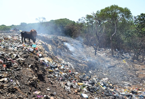 Heat from decomposition causes small smoke columns to rise from an unsanitary landfill site near Panchgani, India in 2012.