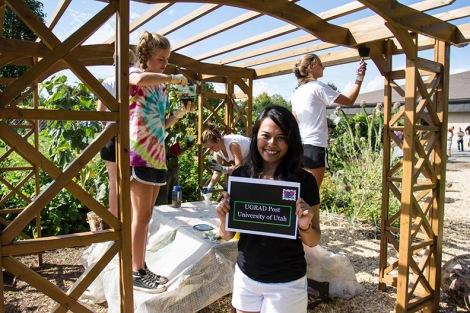 Social Justice Gardens