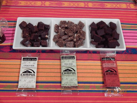 Samples of Chapul's delicious looking bars on display at the Social Soup lecture.