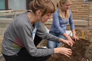 Students plant seeds at the Sill Center garden.