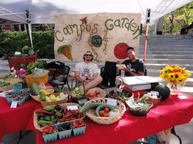 Student garden stewards and volunteers selling campus-grown produce at the 2014 U of U Farmer's Market.
