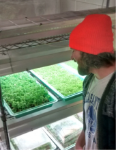 Steward Nick Volker chuckles at the tiny microgreens.