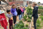 University Continuing Education brought an elementary student group to the Edible Campus Gardens on April 2.