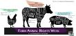 Farm Animal Rights Week Banner