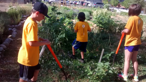 Club U students help pull weeds at the Pioneer Garden.