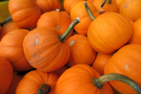 Fall flavor favorites: pumpkin soup, pumpkin seeds, and pumpkin pie.
