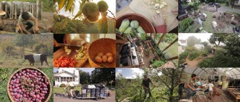 "Scenes from ""Inhabit: A Permaculture Perspective,"" playing April 7 at 7pm in the Union Theatre."