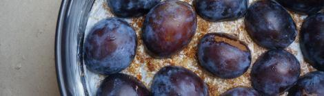 Fresh, local plums.
