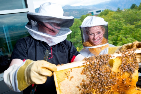 Two smiling beekeepers check the hives.