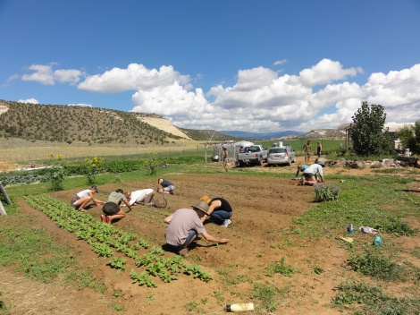 Students farming in Boulder, Utah.