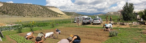 Students farming in Boulder, Utah.