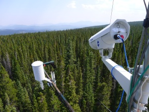 Camera on the Niwot Ridge tower at the Mountain Research Station in Colorado. Courtesy of Andrew Richardson.